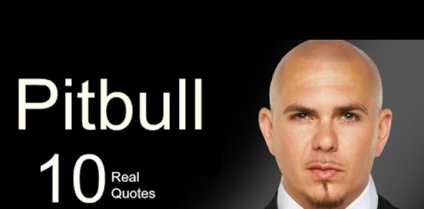 Pitbull 10 Real Life Quotes on Success   Inspiring   Motivational Quotes