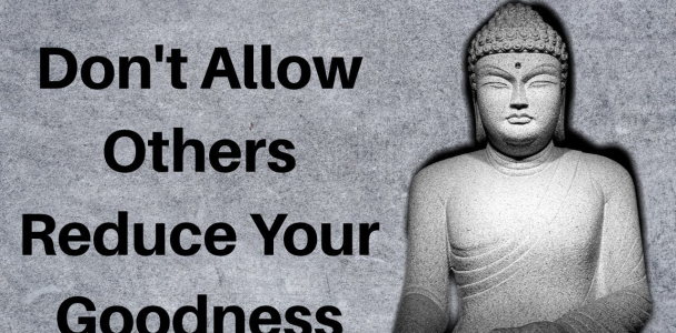 Inspirational Buddha Quotes   Positive Quotes   Buddha Quotes And WhatsApp Status By MIND SHIFT